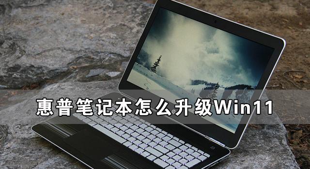 惠普笔记本怎么升级Win11 惠普笔记本升级Win11详细教程(图1)
