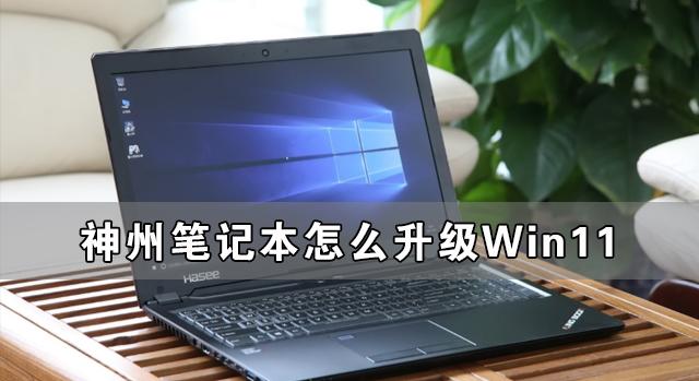 神州笔记本怎么升级Win11 神舟电脑升级Win11详细教程