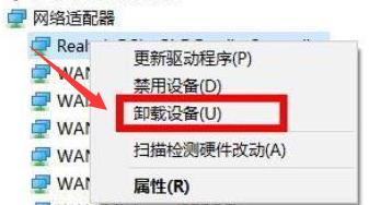 Win11重新安装显卡驱动怎么操作?Win11重新安装显卡驱动方法(图4)